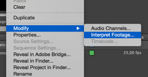 Interpret footage premiere pro